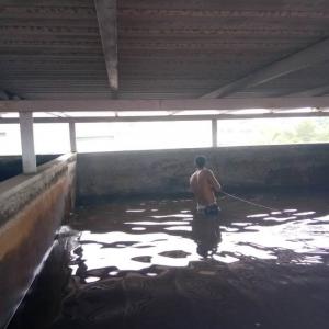DRAINING-WATER